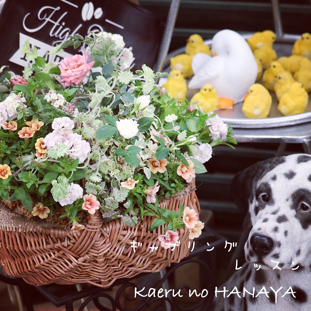 ギャザリング教室 Kaeru no HANAYA