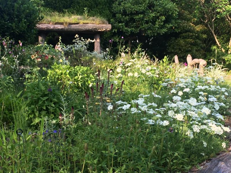 庭園の植栽、メンテ