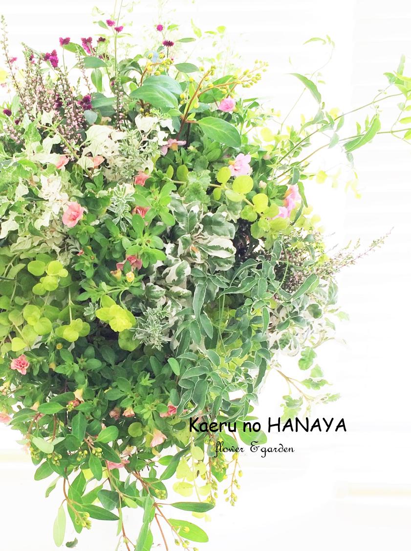 ウォールバスケット|kaeru no HANAYA