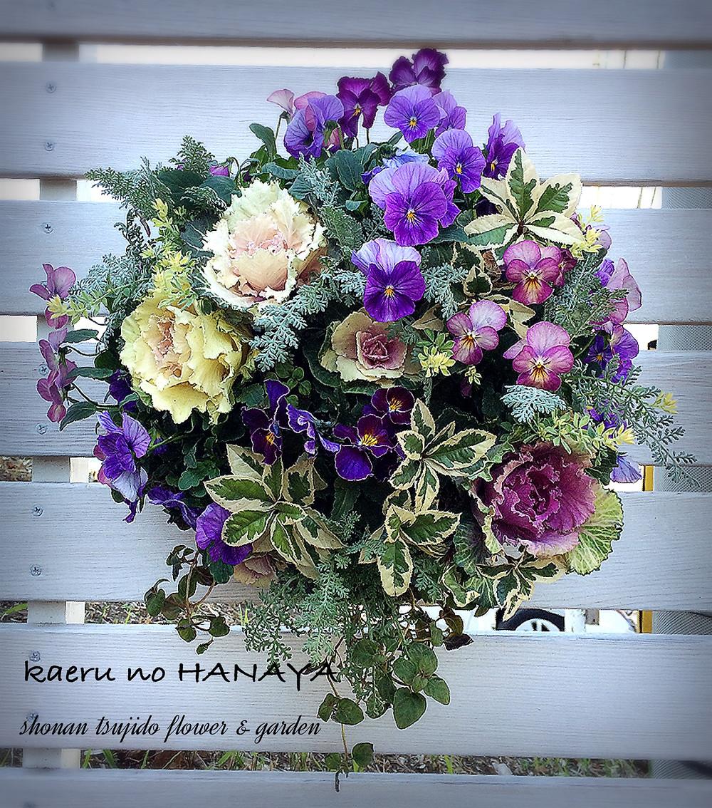 ハンギングバスケット教室12月|kaeru no HANAYA