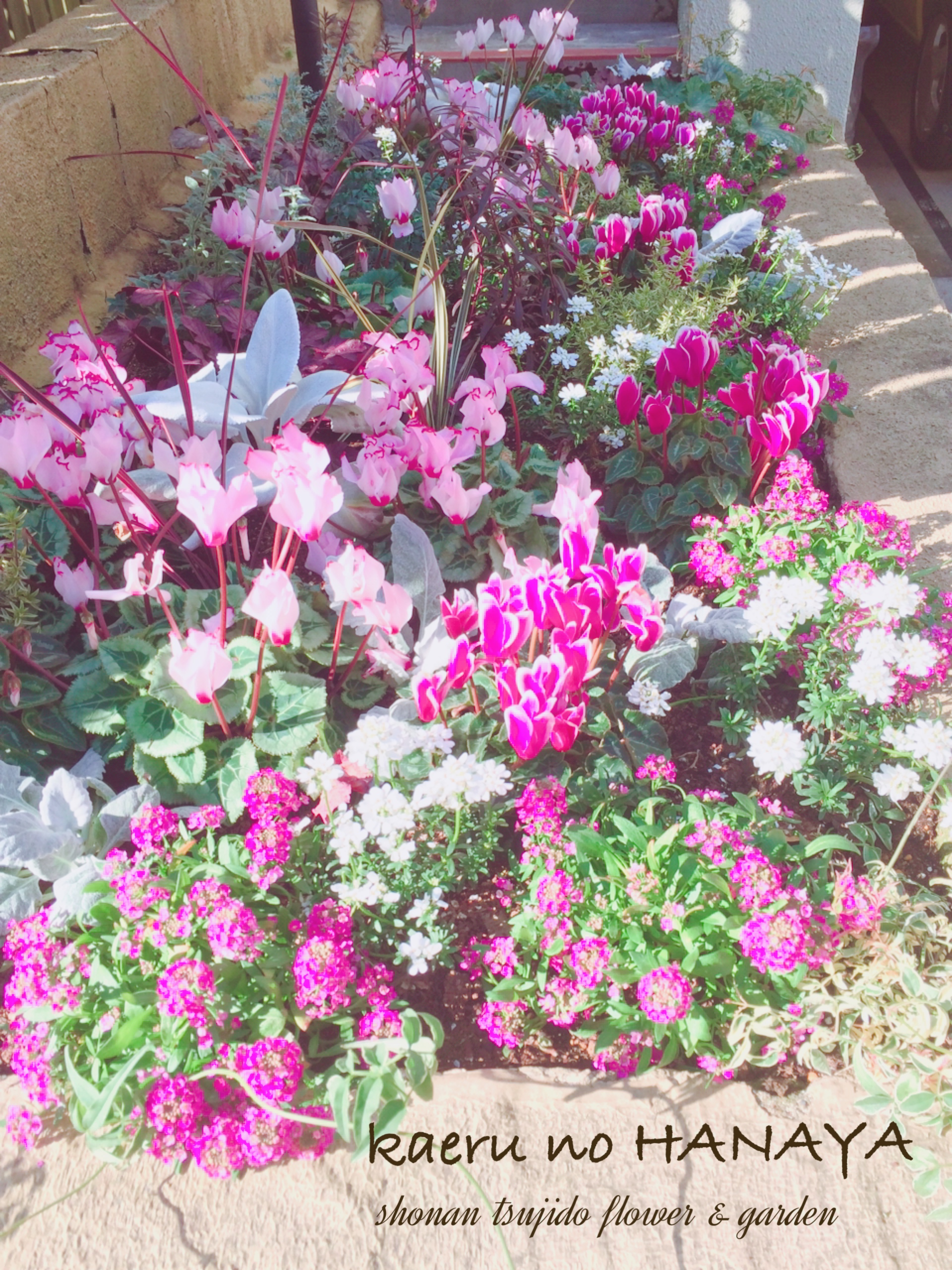 個人邸の花壇の植栽
