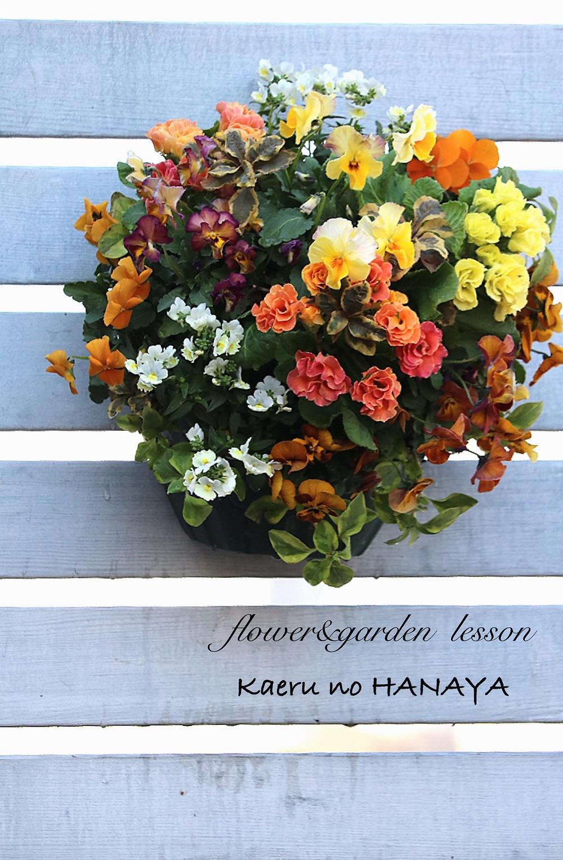 ハンギングバスケット|Kaeru no HANAYA