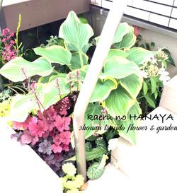 個人邸の植栽