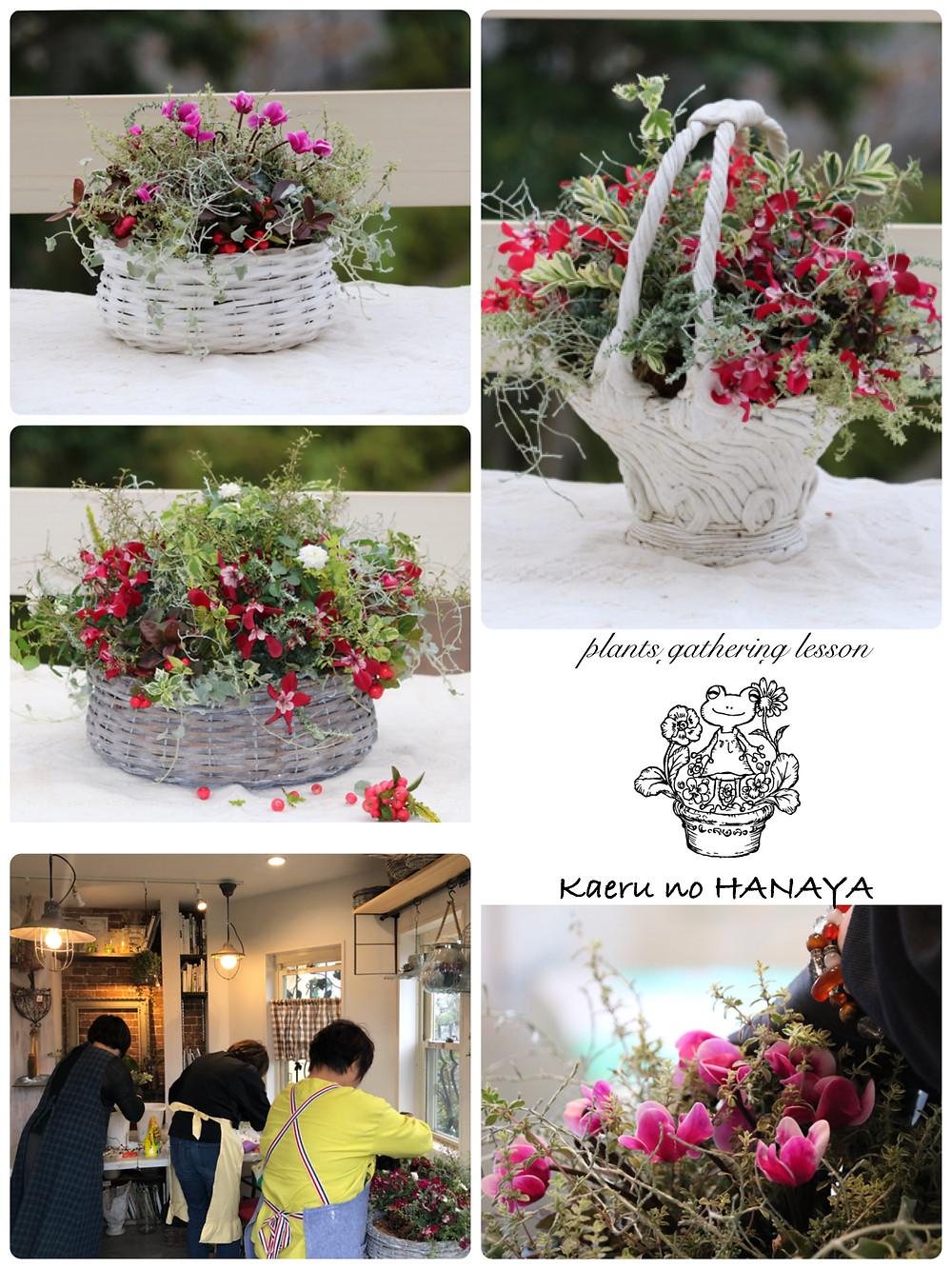 プランツギャザリング 教室 |Kaeru no HANAYA
