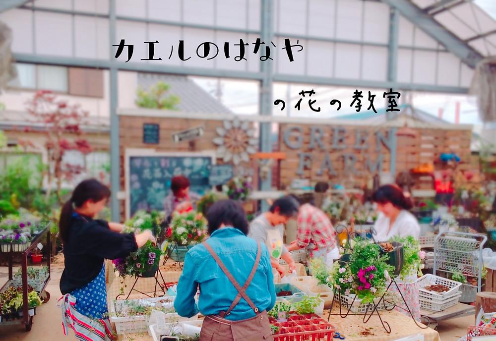 カエルのはなやの花の教室@横浜戸塚