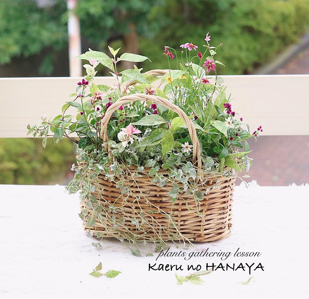 ギャザリング寄せ植え 花かご