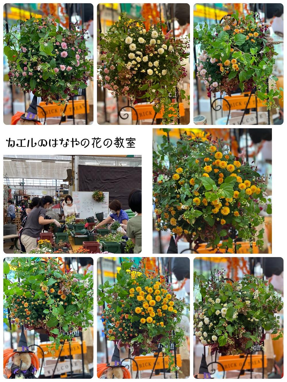 ハンギングバスケット教室 横浜金沢皆さんの作品