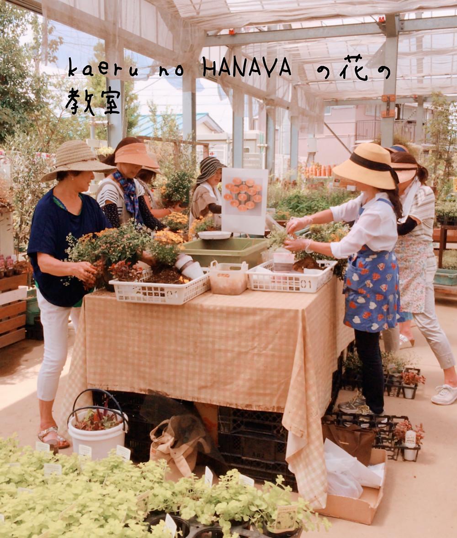 kaeru no HANAYA の花の教室