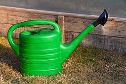 watering-can-3547861.jpg