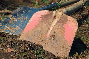 gardening-4931739.jpg