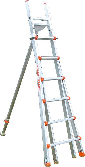 Baumleiter Profi, Baumfreund, ausziehbar von 2,20-3,60 Meter