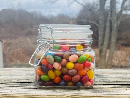 Can you guess how many jelly beans??
