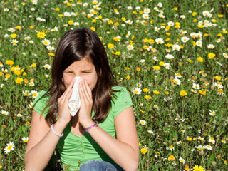 Alternative relief for hay fever sufferers