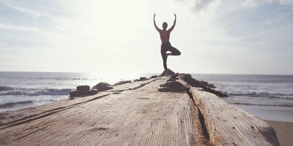 Vinyasa Yoga Yogalärarutbildning 2022!