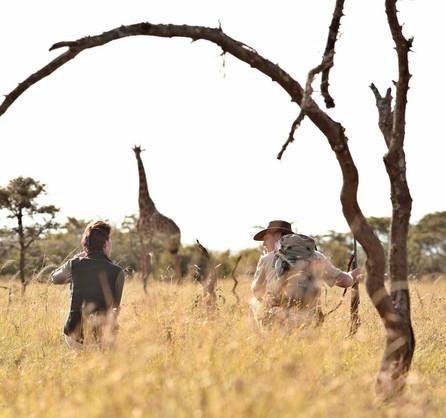 Walking Safari watching giraffe