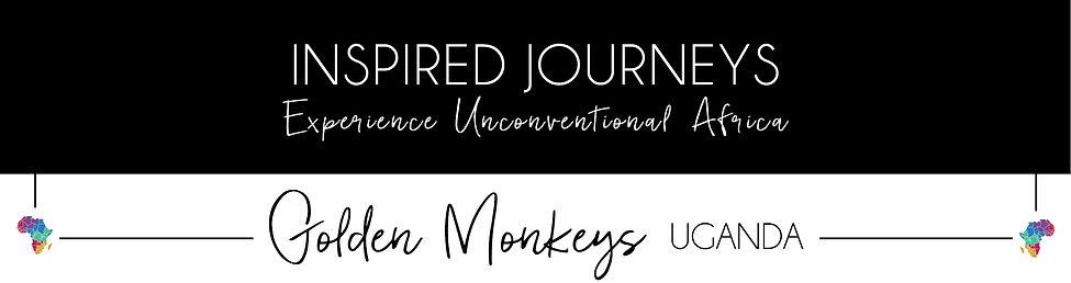 Golden Monkeys-51.jpg