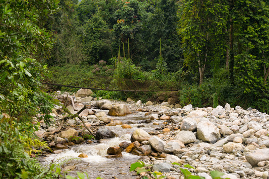 Riverbed with bridge in Rwenzori
