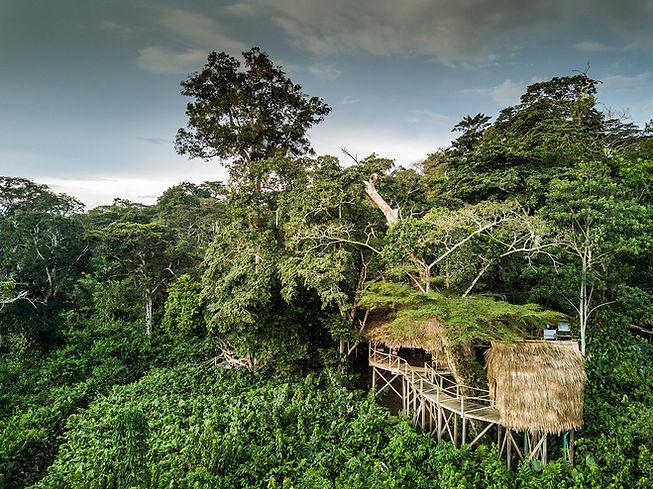 2. Odzala Discovery Camps - Ngaga Camp a