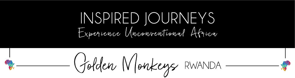 Golden Monkeys - Rwanda