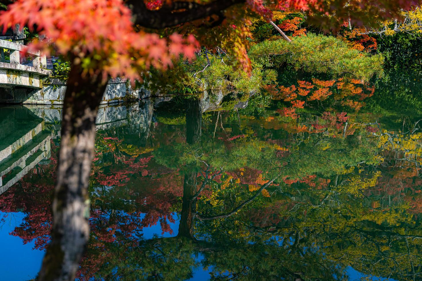 TKPA-Kyoto201911-0208-HDWH.jpg