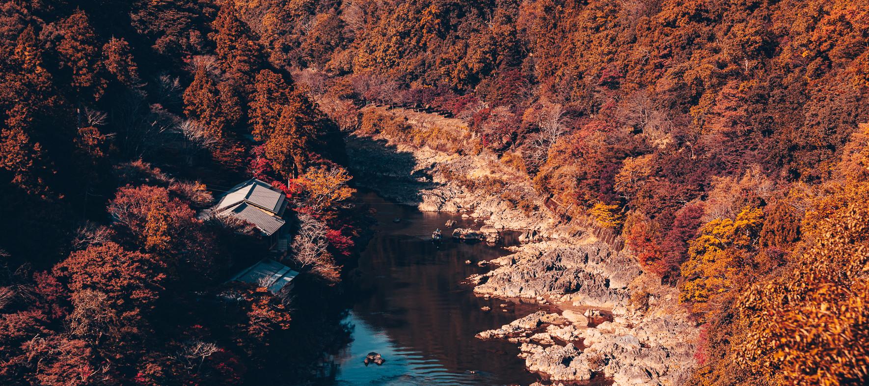 TKPA-Kyoto201911-0351-HDWH.jpg