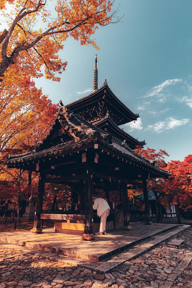 TKPA-Kyoto201911-0178-HDWH.jpg