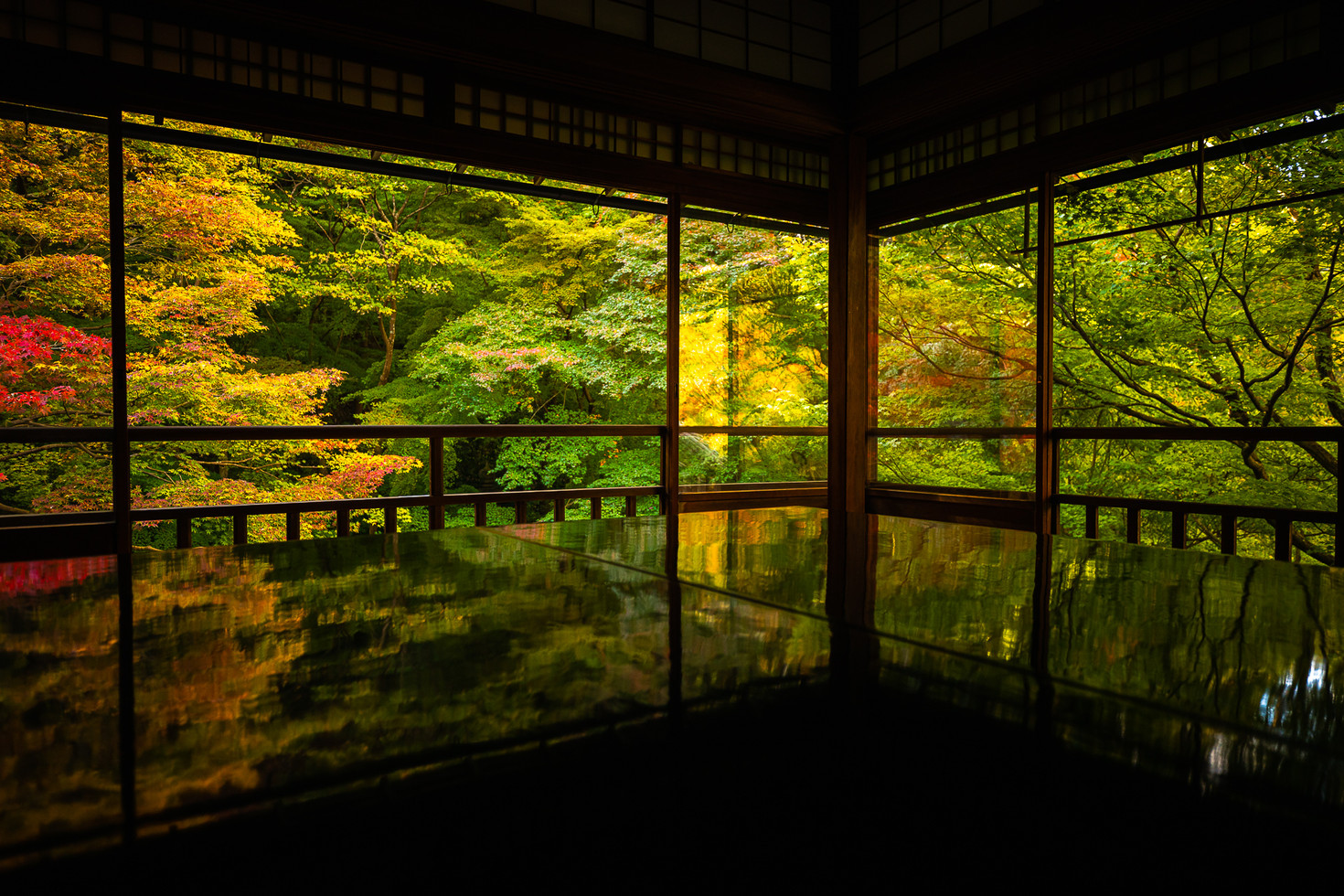 TKPA-Kyoto201911-0064-HDWH.jpg