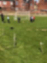 football nets_edited.jpg