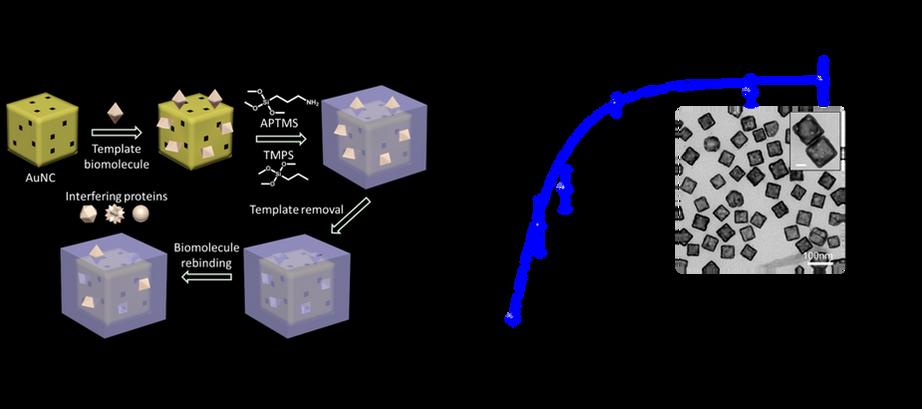 Plasmonic NM_003.tif