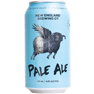 NEW ENGLAND PALE ALE 6 PACK