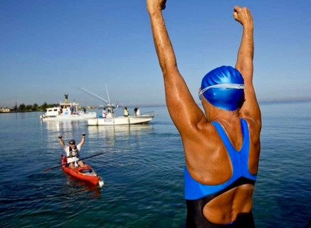 """Never, Ever Give Up."" Diana Nyad"