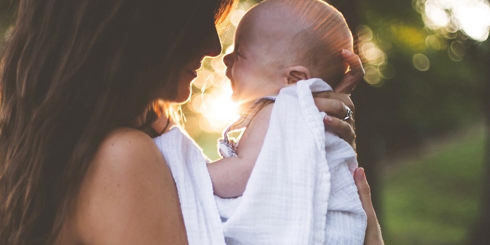 Nurturing Mum - A Professionals Workshop