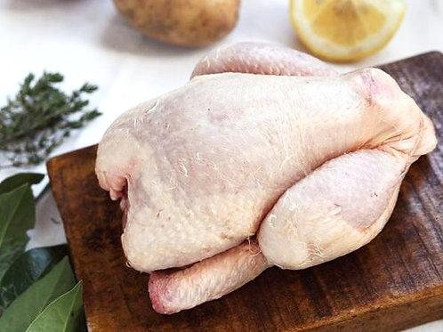 Pollo intero Italiano
