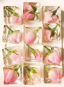 Roses_for_ice_buckets.jpg