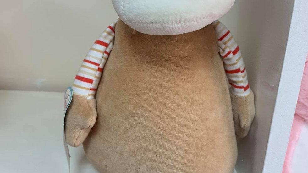 Pastel Monkey cubbie