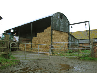 Pigsty's, Haybarn's and Boxty!