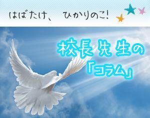 banner-hikarinoko.jpg