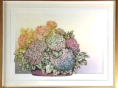 Obra de Wilma Sedys - Hortênsias