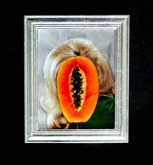 Proper Gander (Ann/Papaya), 2018