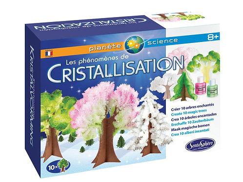 Kit La Chimie de la Cristallisation