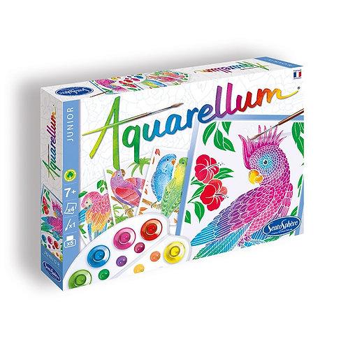 Aquarellum Junior Perroquets