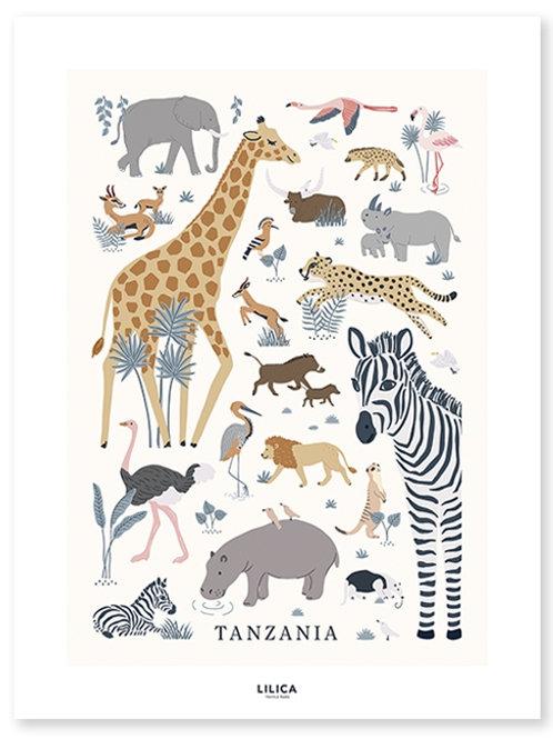 Affiche Tanzania