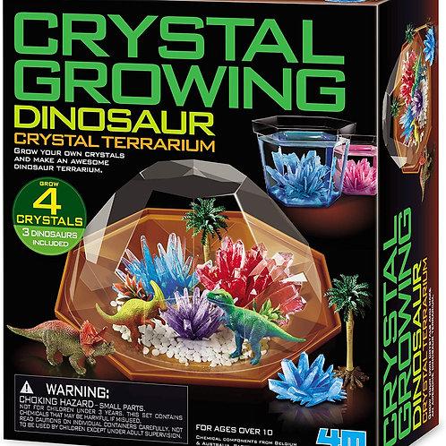 Terrarium cristaux et dinosaures