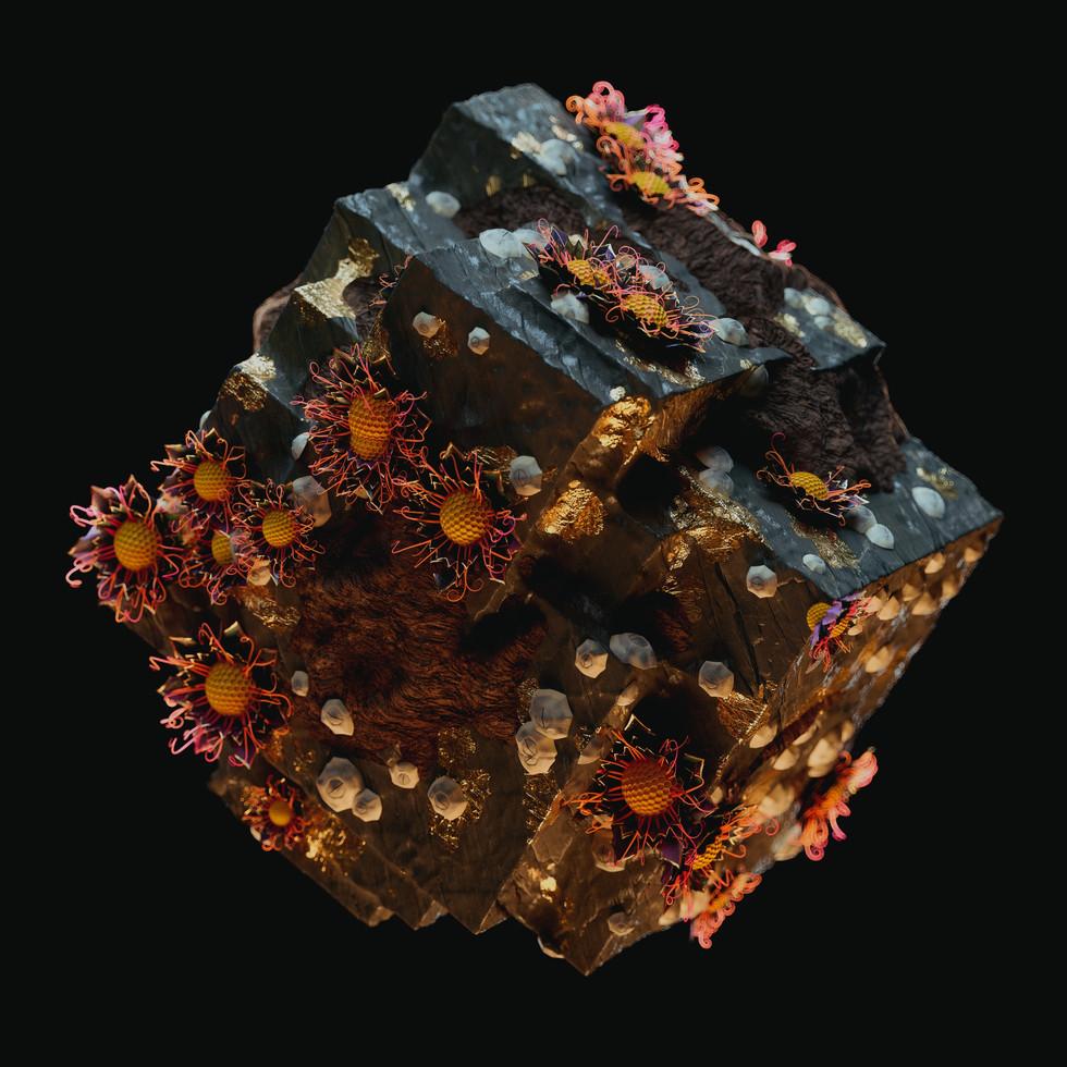 Block_Biome_v_03_0001.jpg