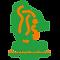nuevo logo CIES _Mesa de trabajo 1.png