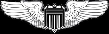 United_States_Air_Force_Pilot_Badge.svg-