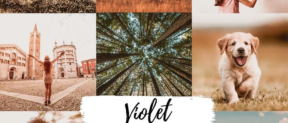 Preset 'Violet'