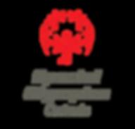 SOO-Logo_2-Line_2c-RedGreyCenter.png