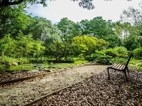 3 Cedar Island Wilmington NC by Michelle Gurrera