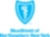 BSNENY logo.png